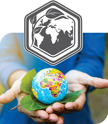 About sustainable development